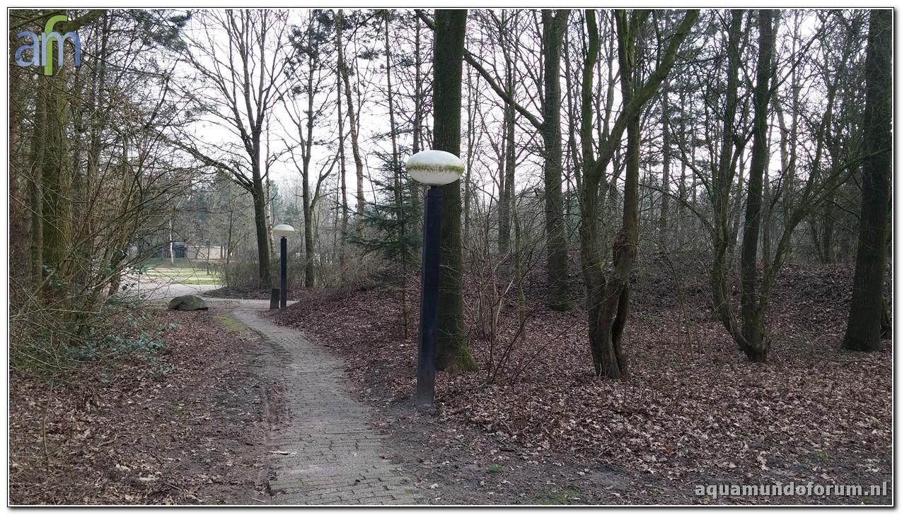 Center Parcs De Huttenheugte Cottage 6persoons Premium nummer 653 (40).jpg