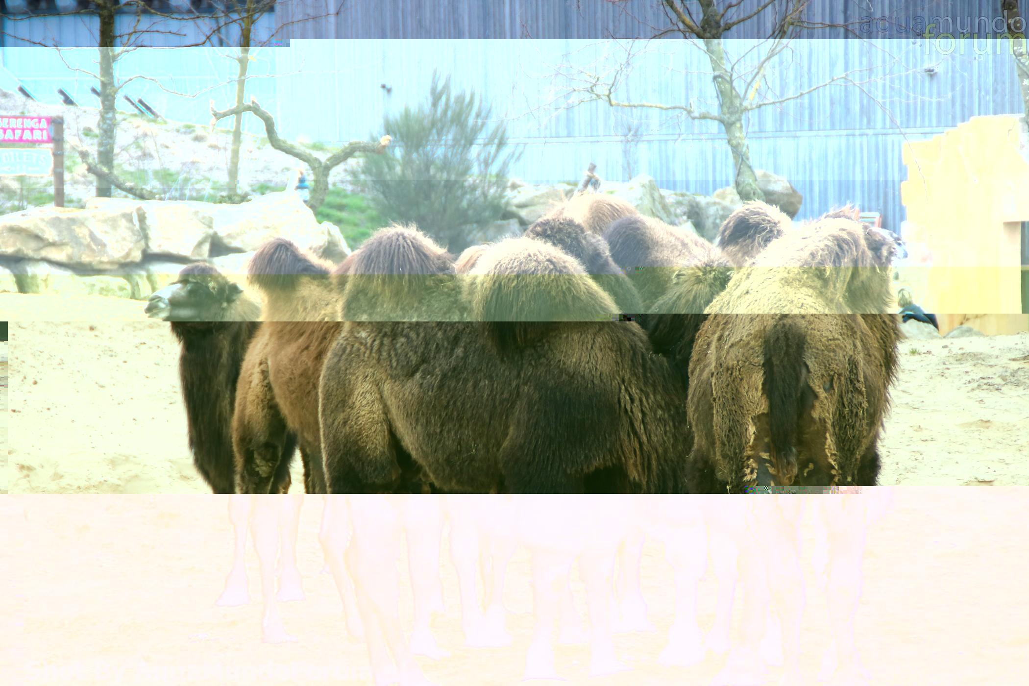 Wildlands testdag-3678.jpg