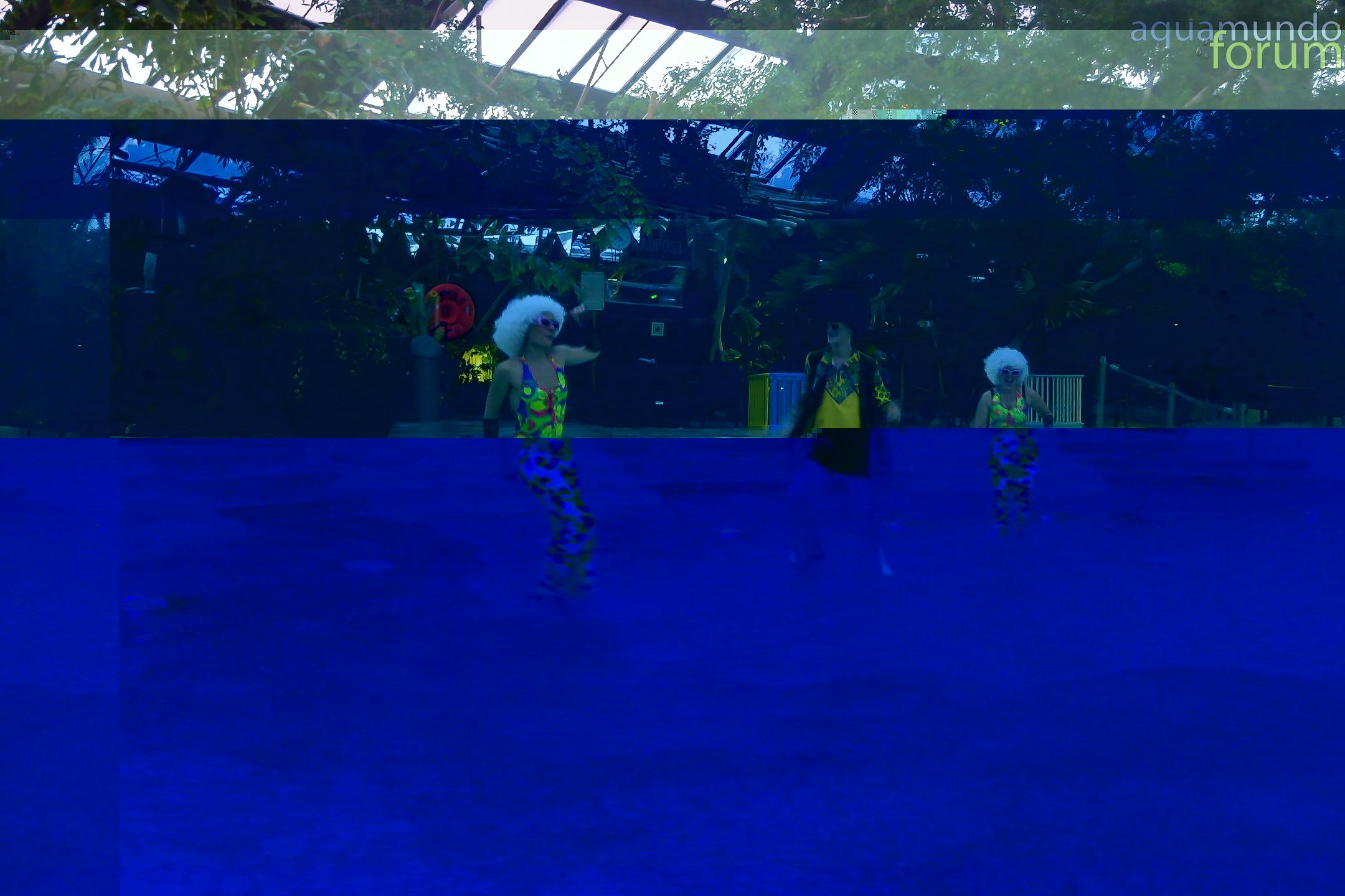 Zomer Poolparty@Center Parcs De Huttenheugte 2012 19.jpg