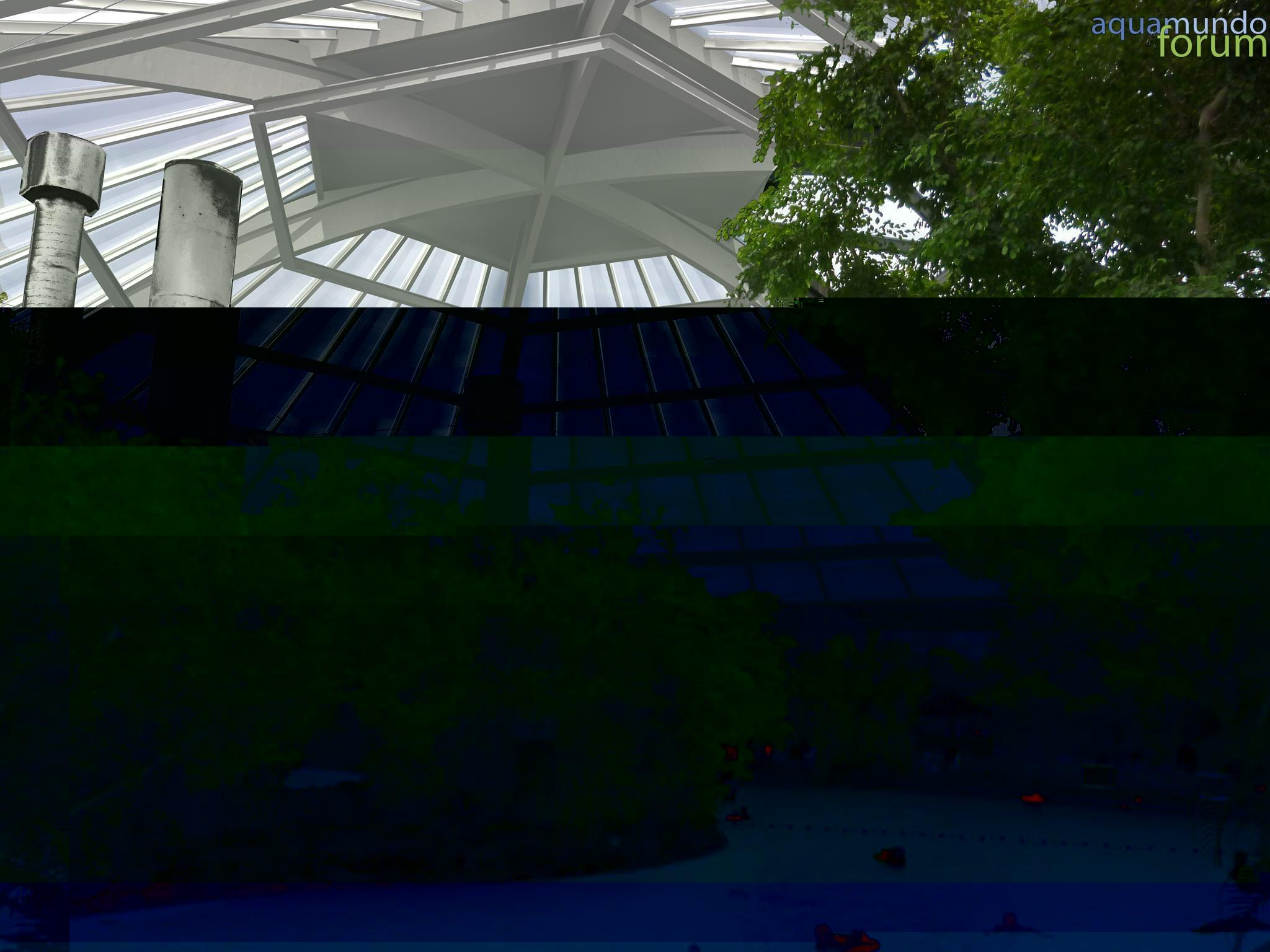 Vernieuwing Koepel Center Parcs Het Heijderbos nieuwe situatie.jpg