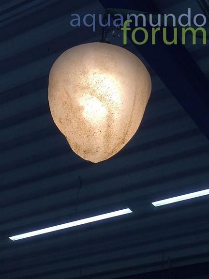 Nieuwe LED verlichting AM HB.jpg