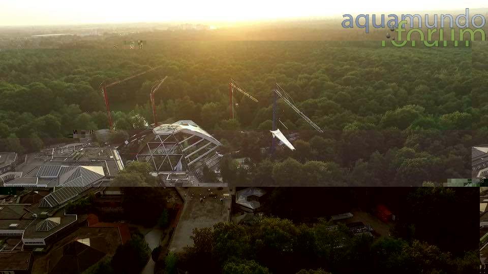Center Parcs Het Heijderbos Koepel vanuit Drone (1).jpg