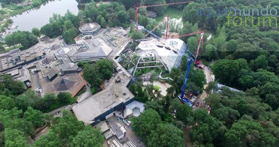 Center Parcs Het Heijderbos Koepel vanuit Drone (2).jpg