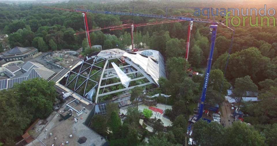 Center Parcs Het Heijderbos Koepel vanuit Drone (4).jpg