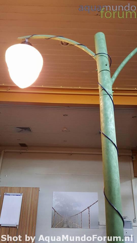 Led lampen in AM.jpg