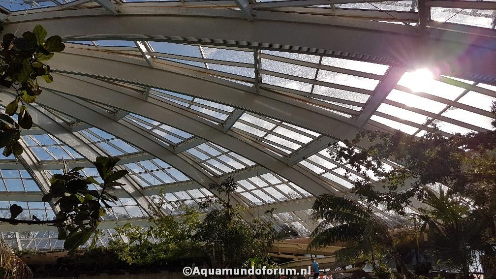 Aqua Mundo De Kempervennen vernieuwd en de eerste beelden (9).jpg