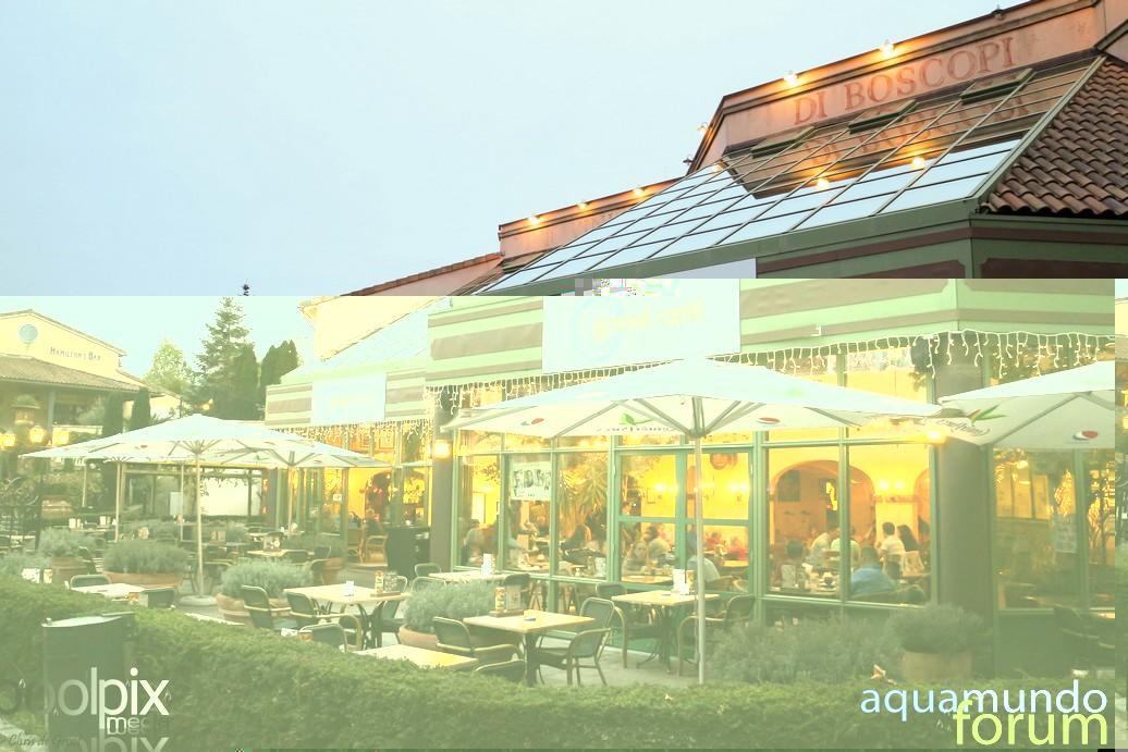 Market Square Center Parcs De Eemhof Bij schemering en avond-1.jpg