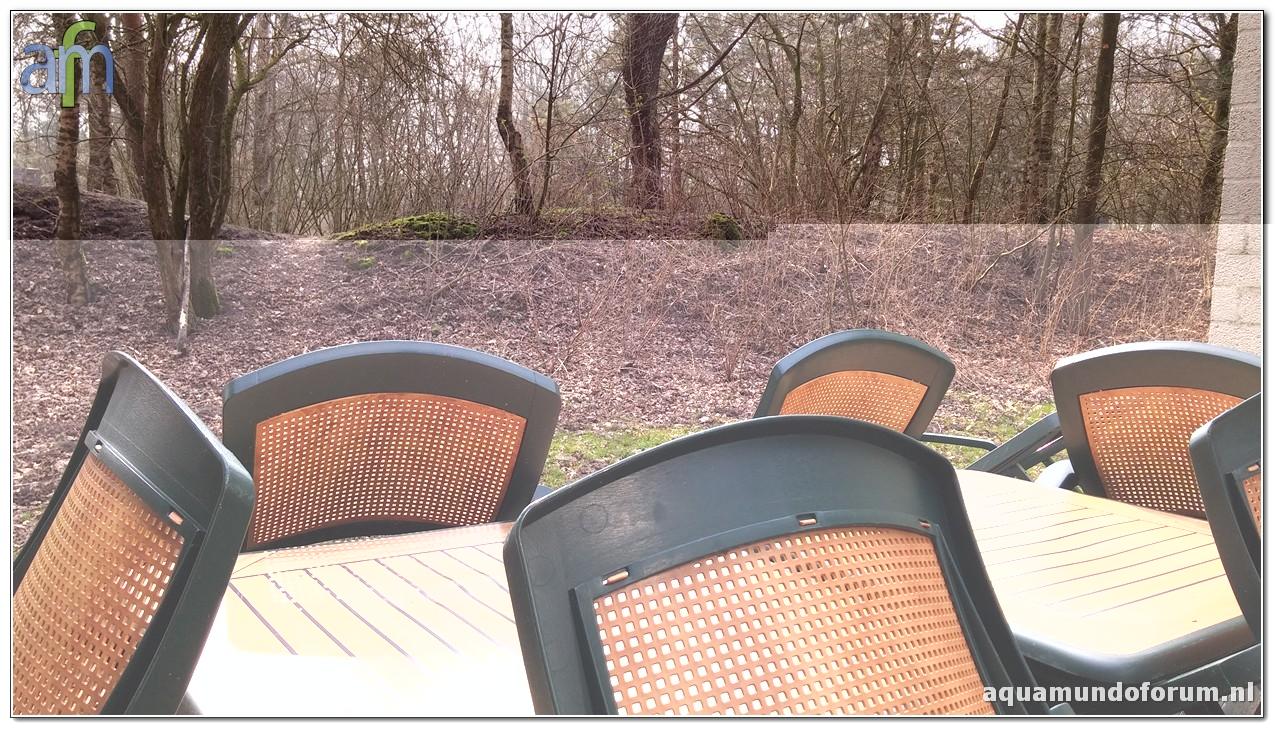 Center Parcs De Huttenheugte Cottage 6persoons Premium nummer 653 (4).jpg