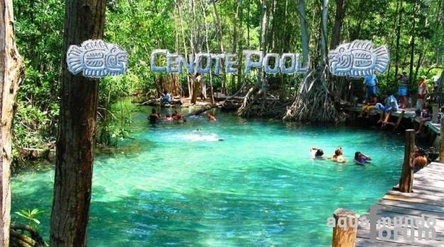 Aqua Mundo Forum Center Parcs (Vienne) Le Bois aux Daims krijgt Cenote Pool in de Aqua Mundo # Le Bois Aux Daims Adresse